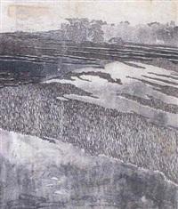 landscape [med: colour woodcut (algraphie) by marie (mitzi) von uchatius
